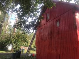 Barn Painted